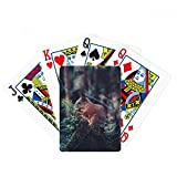 Cute Squirrel Forestry Science Nature Scenery Poker Playing Card Tabletop Board Game Gift