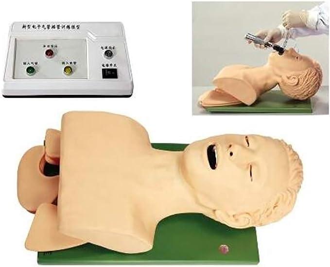 OPNG Intubacion traqueal Formación Modelo Practicar el Tubo nasogástrico Enfermería Enfermera Laboratorio Gestión de la vía aérea con Dispositivo de Alarma y Diente: Amazon.es: Deportes y aire libre