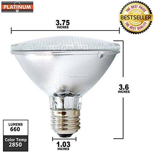 Bulbrite H50PAR30FL 120V 50W PAR30 Halogen Flood Light -