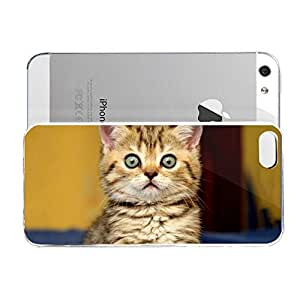 iPhone 5&5S cover case Animals Big Kitten Eyes