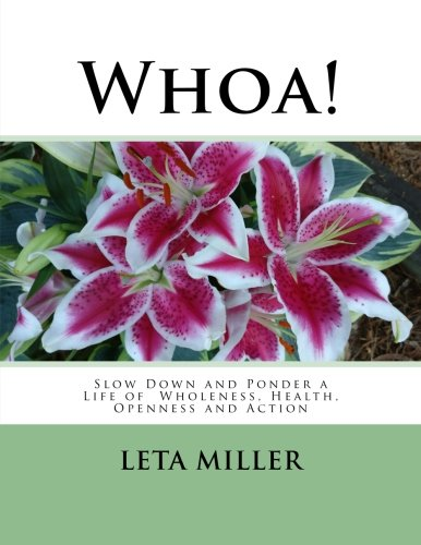Read Online Whoa!: Slow Down and Ponder a Life of Wholeness, Health, Openness and Action PDF