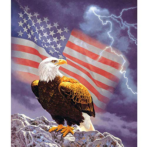 DIY 5D Diamond Painting by Number Kits Crystal Rhinestone Embroidery Pictures Arts Craft for Home Wall Decor Gift,17.722 inch (Eagle with American Flag) ()