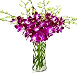 Fresh Cut Flowers -Dendrobium Purple Orchids with Vase