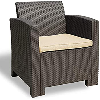 Surprising Amazon Com Winsday Patio Resin Plastic Rattan Pattern Squirreltailoven Fun Painted Chair Ideas Images Squirreltailovenorg