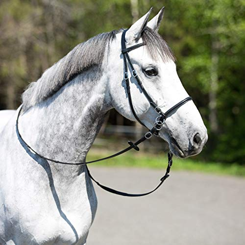 (Horze Leather Bitless Bridle (Horse) )