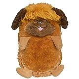 Jay at Play Hideaway Pet - Persian Kitten - Unfoldable Pillow Plush Animal - As Seen on TV