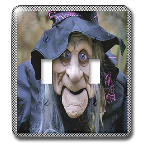 (3dRose Sandy Mertens Halloween Designs - Old Lady Costume with Frame - Light Switch Covers - double toggle switch)