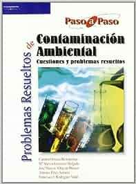 Problemas resueltos de contaminación ambiental Química