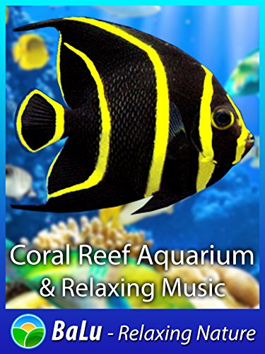 coral-reef-aquarium-relaxing-music-balu-relaxing-nature