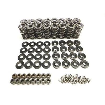 """Brian Tooley Racing BTR Dual Spring Kit .660"""" LS1 LS2 LS3 LQ4 Steel Retainers Fits LS1 LS2 LS3 LS4 LS6 L76 L92 L99 LQ4 LQ9 L33 LSA: Automotive"""