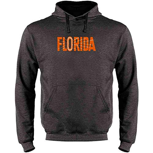 Florida State Retro Vintage Travel Heather Charcoal Gray 3XL Mens Fleece Hoodie ()