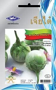 Amazon.com: Chao phaya Berenjena (240 semillas) semillas – 1 ...