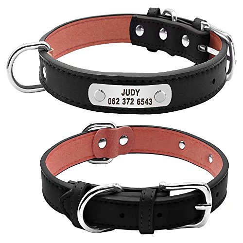 Didog Personalized Dog Collars-Engraved Custom Leather Padded Pet Collars with Nameplate for Small Medium Large Dogs,Black,M Size