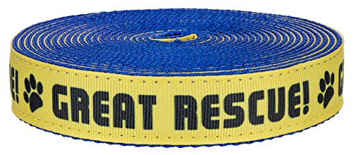 Country Brook Design 3/4 Inch Great Rescue on Royal Blue Nylon Webbing, 5 Yards