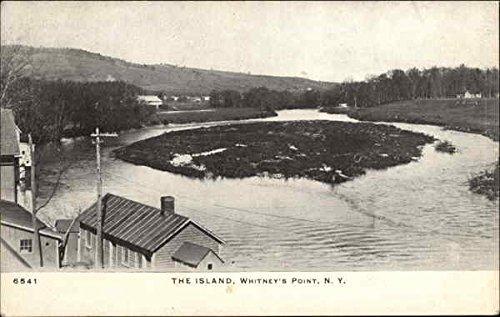 The Island Whitney Point, New York Original Vintage Postcard