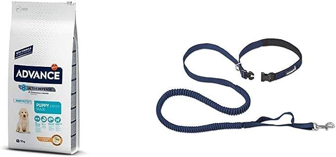 Advance Advance Pienso para Perro Maxi Puppy con Pollo - 12000 gr + Correa Elastica Running de Regalo