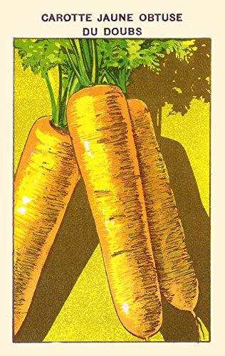 Posterazzi Poster Print Collection Yellow carrots Poster Pri