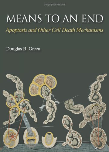 Means to an End: Apoptosis and Other Cell Death Mechanisms