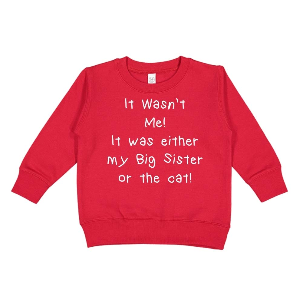 Toddler//Kids Sweatshirt It Wasnt Me It was Either My Big Sister Or The Cat
