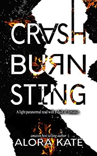 Crash Burn Sting by Alora Kate ebook deal