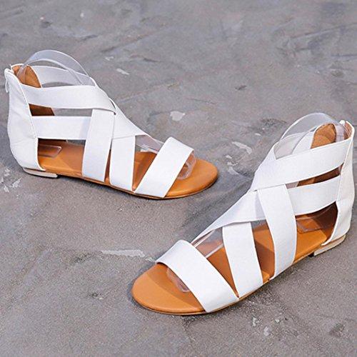 Heels Hausschuhe Kreuz Reißverschluss Flip Römischen Sandalen LHWY Weiß Flache Rückseite Strand Damen Casual Schuhe Frauen Sommer Flops Elastische Sandalen PX68wxY