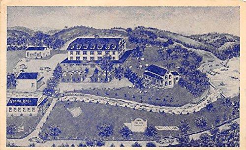 Birds Eye View Spring Lake Hotel Youngsville, New York, Postcard