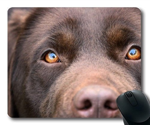 Funny Black Labrador Retriever Dog Swimming, Mousepad (Dogs Mouse Pad) YT -
