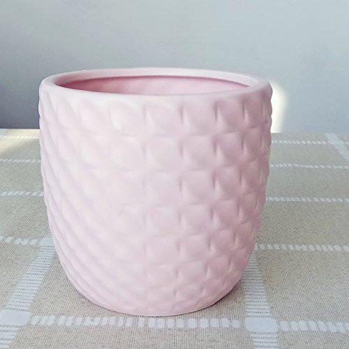 Better-way Pink Round Embossed Ceramic Planter Modern Flower Pot Succulent Plant Container Indoor Pots Gift for New -