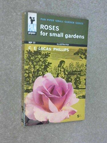 Roses for Small Gardens (Pan Piper Small Garden (Rolling Caterpillar)