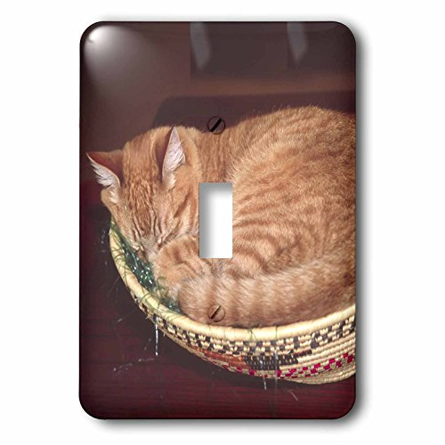 3dRose LLC lsp_83708_1 Orange Tabby Cat Asleep In An Easter Basket Na02 Csl0214 Charles Sleicher Single Toggle Switch