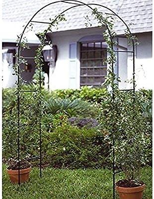 Gr8 - Pergola de jardín con rosas y marco alto de metal para ...