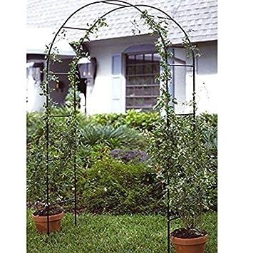 Gr8 Rose De Jardin Arche Pergola Pour Plante Grimpante Fleur