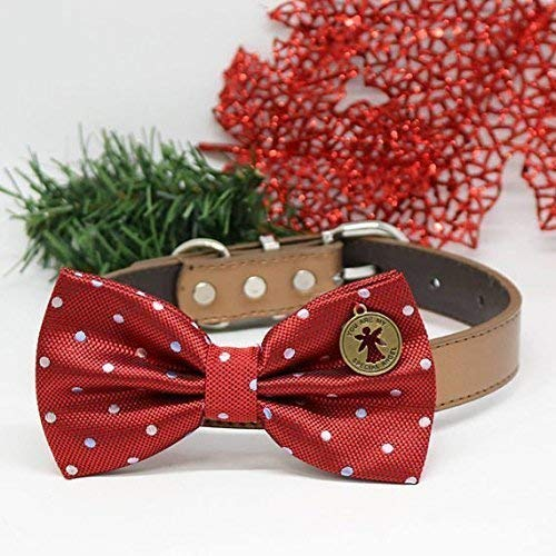 Dog Red Polka Dots Bow tie collar, You are my special angel, Dog birthday gift, wedding accessory