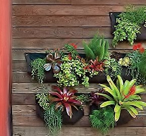 Nice Amazing Amazoncom Large Pocket Vertical Garden Planter Living Wall Planter  Vertical Planters For Outdoor U Indoor Herb Vegetable U Flower Gardens With  Large ...