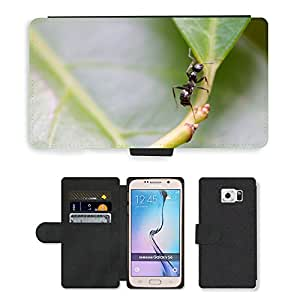 Hot Style Cell Phone Card Slot PU Leather Wallet Case // M00115429 Ant Insect Leaf Nature Background // Samsung Galaxy S6 (Not Fits S6 EDGE)
