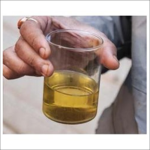 Pure Original Gomutra/Cow Urine, 200ml - Buy Online in