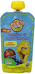 Earth's Best Organic Fruit Yogurt Smoothie, Apple & Blueberry, 4.2 Ounce Pouch (Pack of 12)