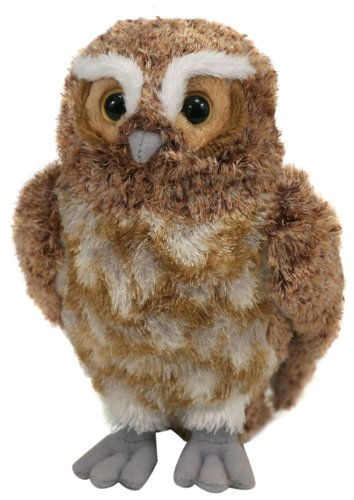 Amazon Com Ty Beanie Baby Gylfie Guardians Of Ga Hoole Owl Toys