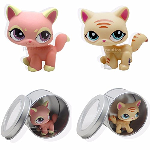 Catzaashop 2pcs Littlest Pet Shop LPS Rare Cat Kitty Orange Animal Toy #1265 #1572 Toy (China Special Rare)