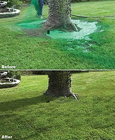 Amazon com : Hydro Mousse Liquid Lawn System - Grow Grass