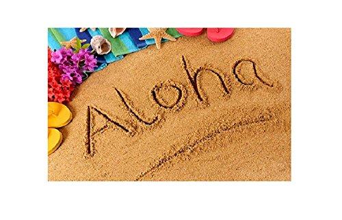 SUN-Shine Aloha Doormat Hawaiian Sand Beach Welcome Mats Non Slip Entrance Rugs Indoor/Front Door/Bathroom 20x31.5Inch -