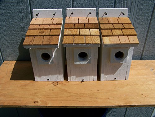 White Bluebird Houses 3 Cedarnest Cedar Shake Roof