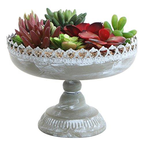 (MyGift 8-Inch Succulent Planter, Metal Vintage Pedestal Style Urn Pot w/Decorative Carved Edge)
