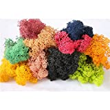 Peicees Mixed Color Reindeer Moss Preserved, 1.4OZ, Great for Dressing Potted Plants, Fairy Garden,Gift Packaging and Many other Crafts