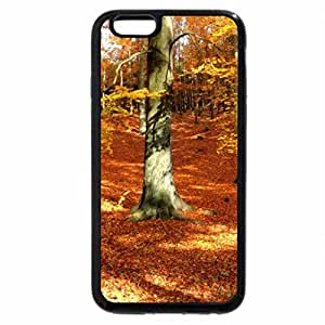 iPhone 6S / iPhone 6 Case (Black) Autumn forest