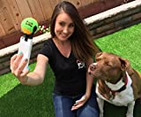 The-Best-Dog-Selfies-Pooch-Selfie-The-Original-Dog-Selfie-Stick-Patented