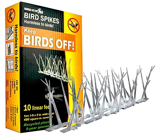 Bird-X SP-10-NR Plastic Narrow Bird Spikes 10 foot Kit with Adhesive Glue, (10 Pack) by Bird-X
