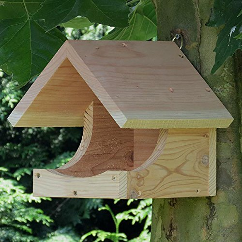Blackbird Nest Box