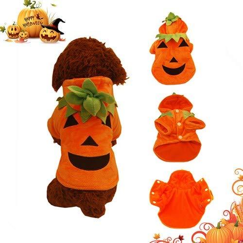 Making A Furry Costumes - Halloween Pet Cosplay Dress,cute pumpkin Dog