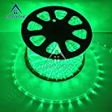 Alion Home LED Rope Lights (3ft - 200ft) Green (200 ft)